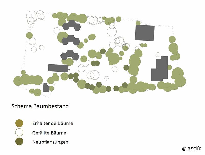 asdfg - Architekten - SFF - Stadtteilschule Fischbek-Falkenberg Wettbewerb Preisträger
